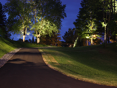Artistic Landscape Lighting VAlleyfiled
